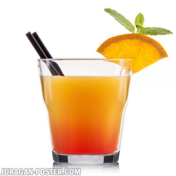 jual poster gambar minuman cocktail jeruk