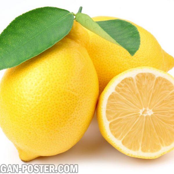 jual poster gambar buah lemon