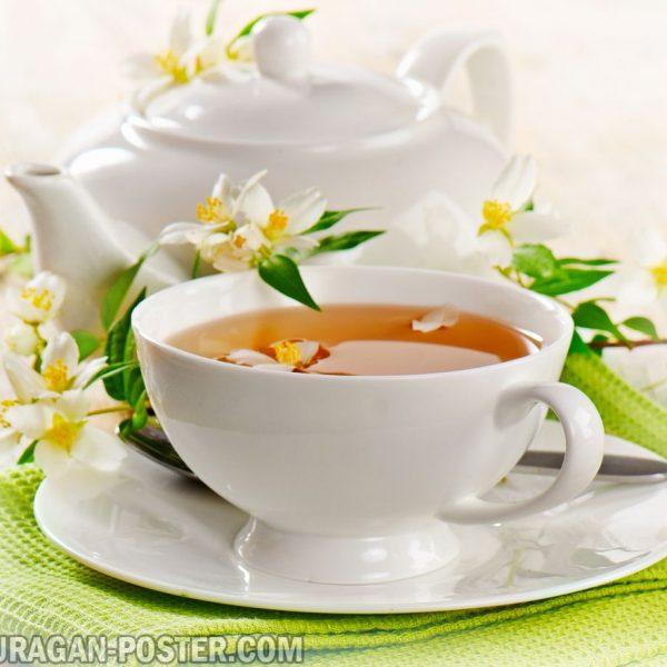 jual poster gambar minuman teh