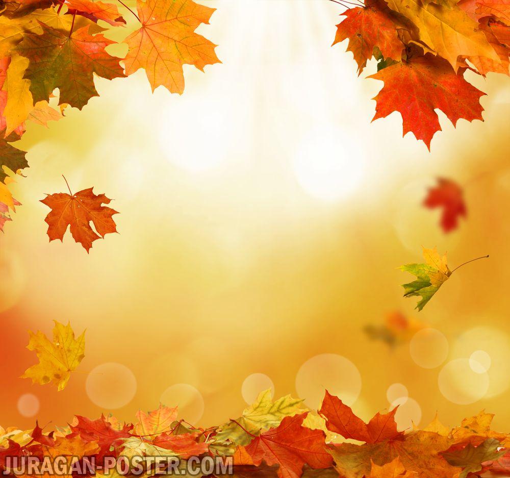 Jual poster gambar pemandangan musim gugur