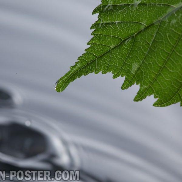 jual poster gambar pemandangan alam hujan rain 02