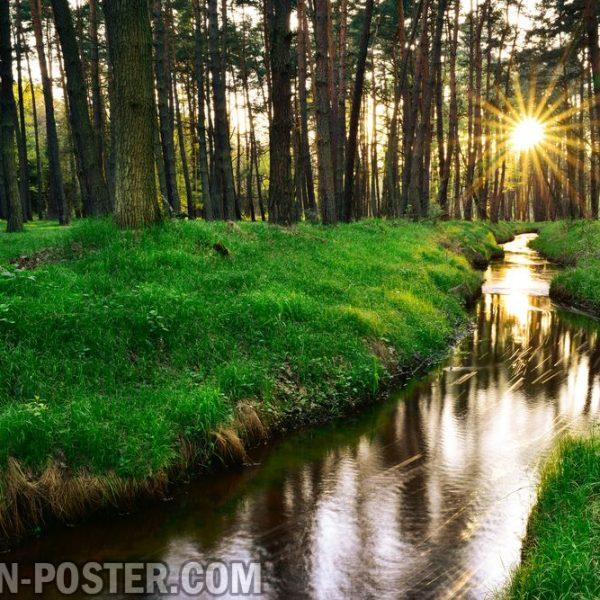 jual poster gambar pemandangan alam musim panas summer 02