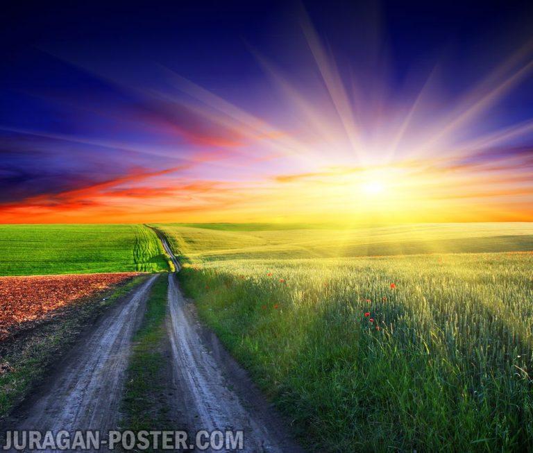 Sunset 02 Jual Poster Di Juragan Poster
