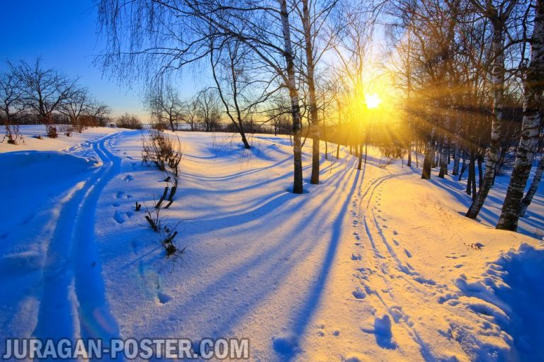 Jual poster gambar pemandangan alam musim salju winter 01