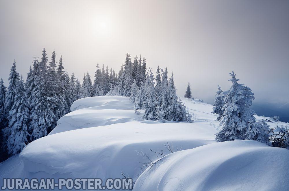 Jual poster gambar pemandangan alam musim salju winter 02
