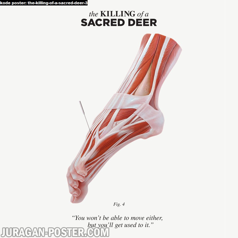 the-killing-of-a-sacred-deer-3