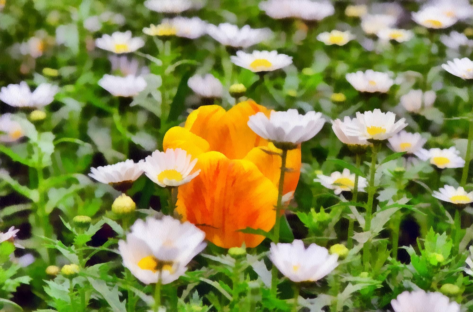 tulip-013 - Watercolor Flower Painting for Sale - Digital ...