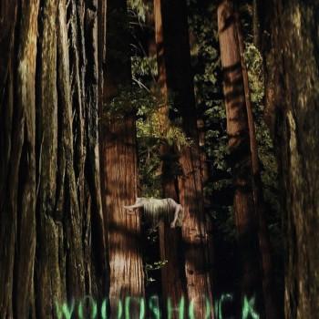 woodshock-movie-poster1