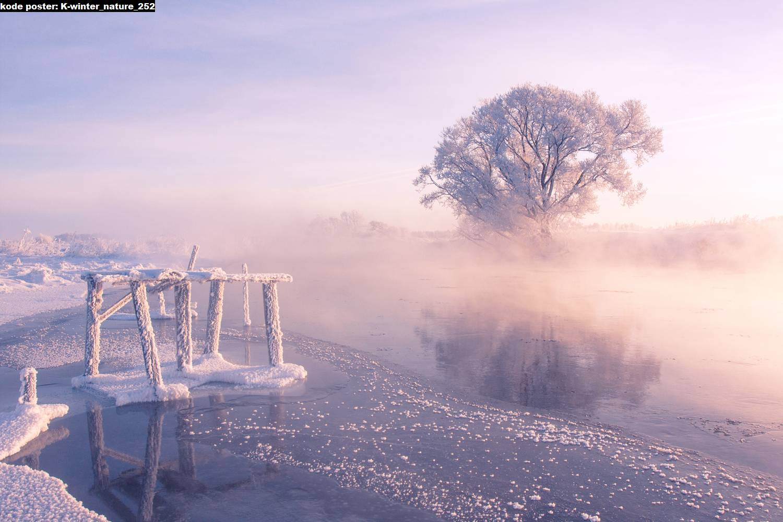 Winter 252 Jual Hiasan Dinding