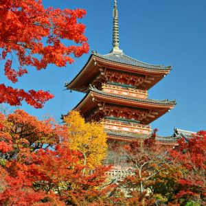 jual poster pemandangan kota kyoto jepang