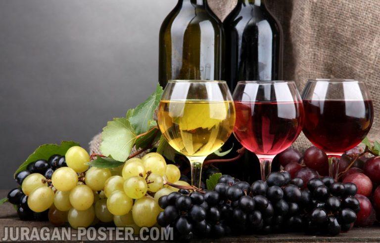 jual poster gambar minuman wine anggur