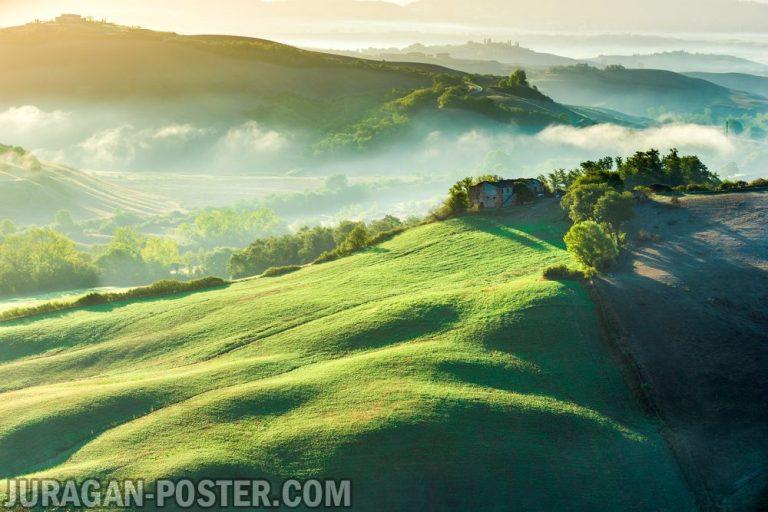 Jual poster gambar pemandangan alam hijau green