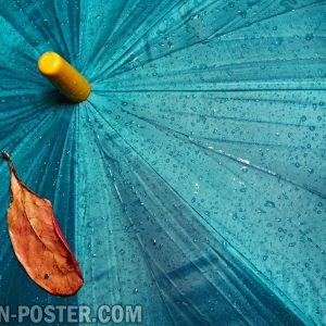 jual poster gambar pemandangan alam hujan rain 01
