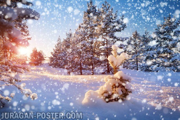 Jual poster gambar pemandangan alam musim salju winter 03